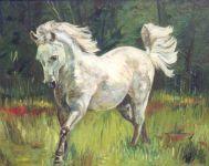 Chevaux - Escapade Equestre 1988
